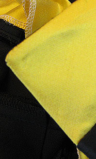 outside of collar, detail